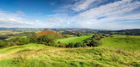 local landmark: A panoramic view of the Dorset countryside from Quarry Hill near Bridport and looking towards Colmers Hill a local landmark