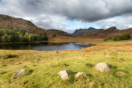 langdale pikes: Autumn at Blea Tarn near Little Langdale in the Lake District with the Langdale Pikes in the distance