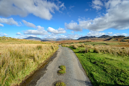 cumbria: A country lane through Birker Fell in the Lake District in Cumbria, looking out towards the mountains of Green How