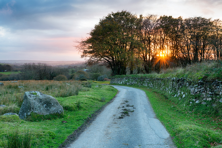 A country lane over Bodmin Moor in the Cornwall countryside