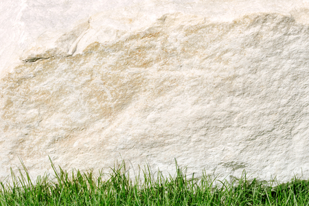 stone background or texture with lawn grass