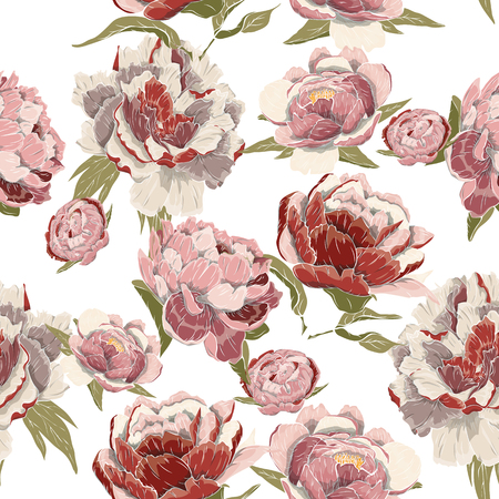 pattern of peonies hand-drawn pink, red, green, Burgundy Illustration