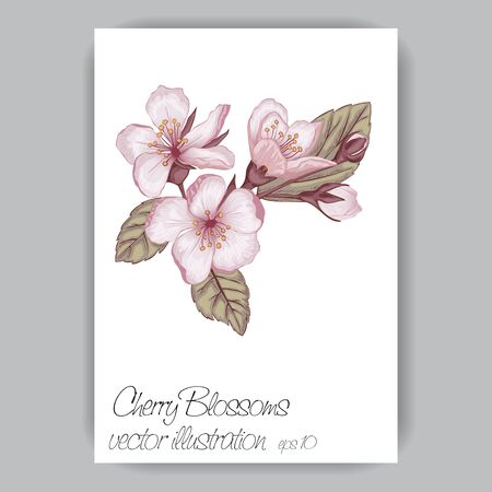 cherry blossom sprig hand-drawn in pink, brown, green colors