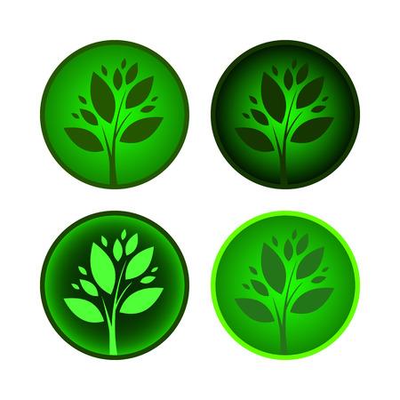 oak tree silhouette: Set of tree icons.  Vector green symbol