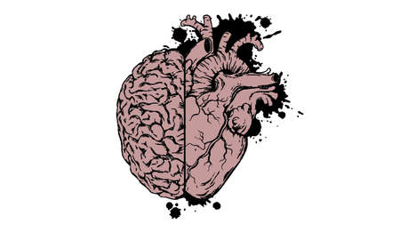 health concept heart with half brain icon vector image