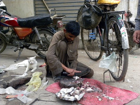 PAKISTANKARACHI_LOCAL FISHERMAN CUTTING FISH PIECE WITH VINTAGE MEAT CLEAVER IN THE STREET TODAY ON WEDNESDAY 4 APRIL 2012                                                       Editorial