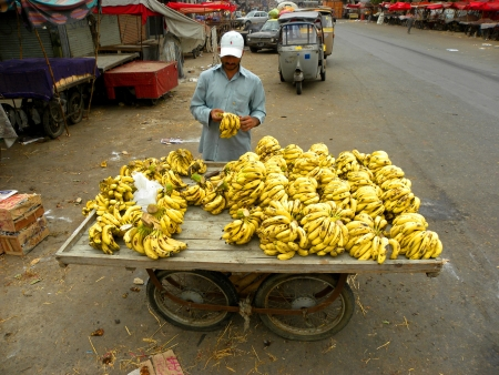 financal: KARACHIPAKISTAN_DAILY VENDOR ARRANGING HIS BANANAS FOR SALE IN THE MORNING TODAY ON SATURDAY 19 JANUARY 2013 IN SADDAR FRUIT MARKET                                Editorial