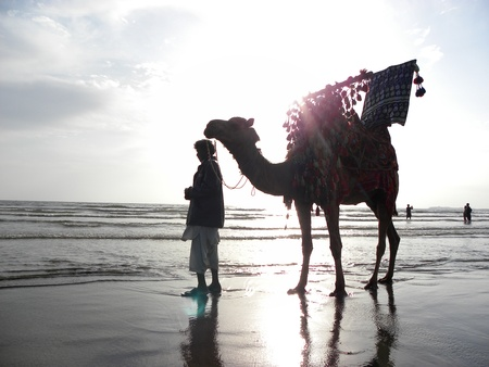 KARACHI,PAKISTAN : CAMEL RIDER FINDING CUSTOMER TO RIDE ON HIS CAMEL HERE ON MONDAY 18 FEBRUARY 2013 AT KARACHI SEA VIEW