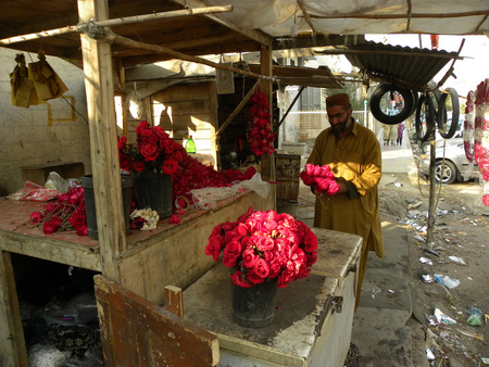 KARACHI PAKISTAN_MAN MAKING FRESH RED ROSES  OF BOUQET ON VALENTINES DAY ROSES ARE ANCIENT SYMBOLS OF LOVE AND BEAUTY HERE ON FRIDAY 14 FEBURARY 2014  Editorial
