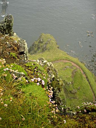Cliffside op de reuzen van Causeway in Noord-Ierland