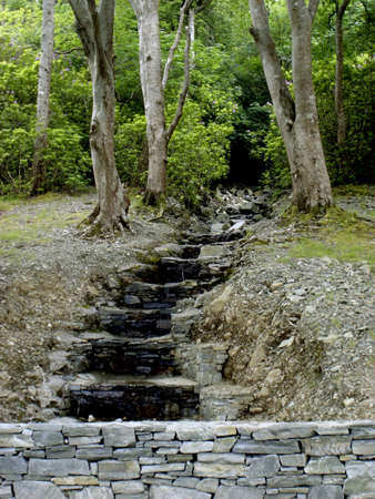 trickles: Water trickles down a set of man-made stairs at the edge of the woods near Kylemore Abbey in Ireland