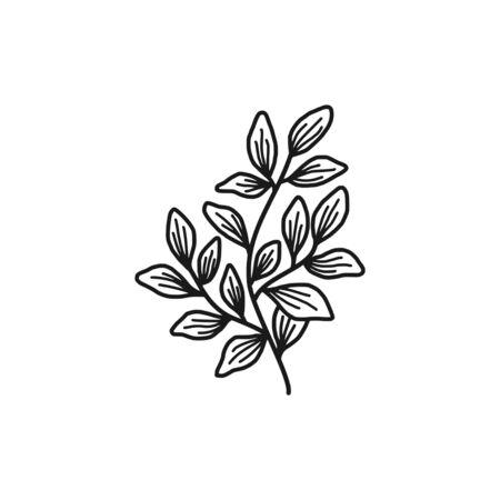 Hand drawn monochrome floral, leaf, and plant element Vetores