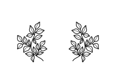 Hand drawn floral, plant elements: leaf and branch. Cut isolated vector illustration for frame, border, ornament design. Doodle sketch style. Unique decoration for greeting card and wedding invitation