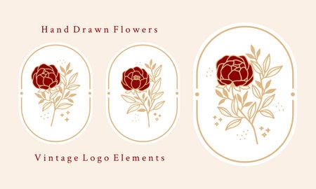 Hand drawn vintage botanical rose flower logo template and feminine beauty brand element set Ilustração