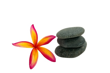 Frangipani and the stone in white background photo