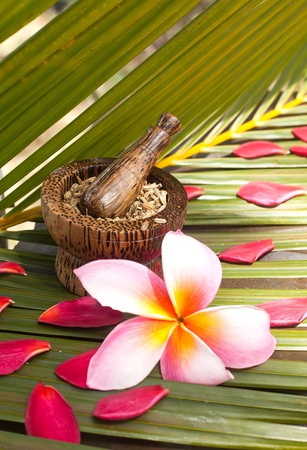 Herb spa and wellness concept on coconut leaf photo