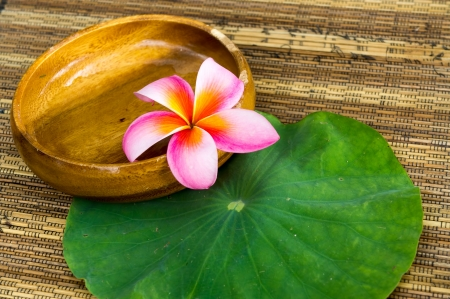 Plumeria flower in wooden bowl on lotus leaf photo