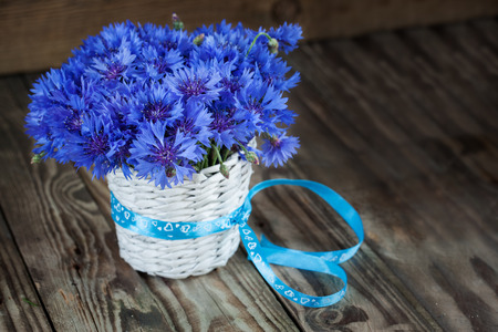 centaurea: A bunch of beautiful summer flower of Cornflower in the white bucket with blue ribbon. Concept of romantic. Stock Photo