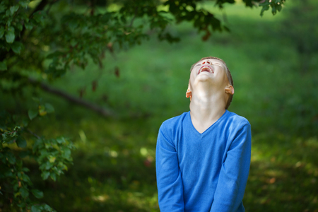 child laughing: happy joyful laughing beautiful little boy on green  background autumn Stock Photo