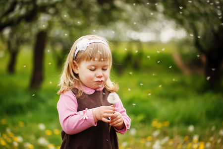 blows: the little girl blows a dandelion othe green background Stock Photo