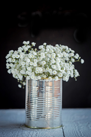 Baby's breath gypsophilia paniculata in old grunge vase on black background