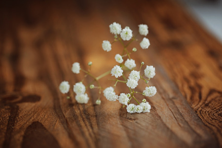 Bunch of white fowers gypsophila on a wooden background, selective focus Stock Photo
