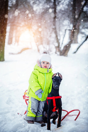a watchman: Little cute  boy with his black dog friends in the winter forest. Stock Photo