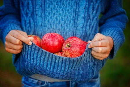 lose up: lose up red apple in children hands, outside