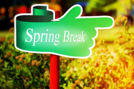 Green signpost with the text spring break written in it, sunny spring day. Stock Photo
