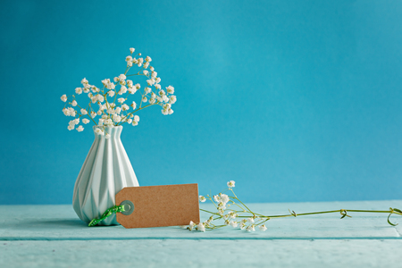 Babys breath - gypsophilia paniculata - in vase with blank on blue background.