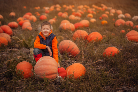 Adorable child having fun with pumpkin on pumpkinpatch on farm