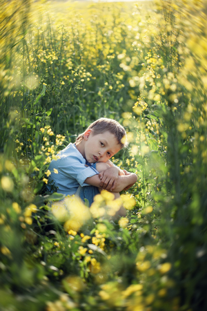 Dissatisfied preschooler boy sitting in the tall grass, propping face with hands and looking at camera in summer day. 스톡 콘텐츠