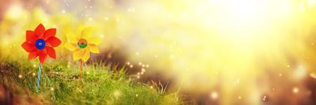 Twee oranje en gele vuurraderen tegen de achtergrond van de natuur in de zomerochtend. Banier. Stockfoto