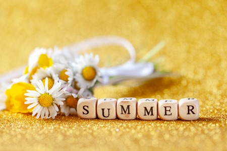 Bouquet flower camomila with text summer on yellow background. Summer consept background Imagens