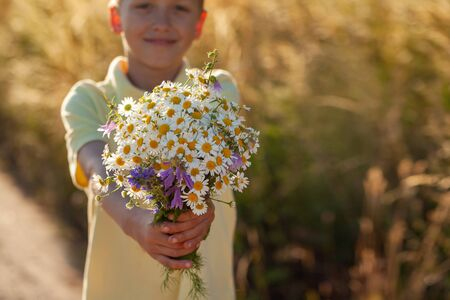 Little kid boy holding bouquet of fields camomile flowers in summer day. Child giving flowers. Holiday concept.