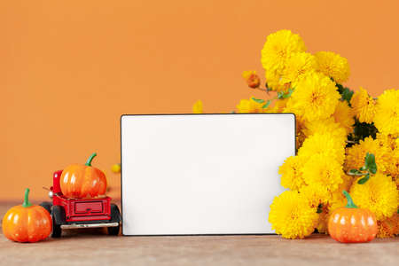 Autumn composition with Yellow chrysanthemums flowers and empty blank lightbox on orange background.