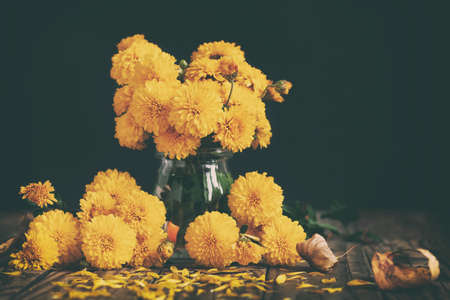 Bouquet of beautiful yellow chrysanthemums on wood table on black background. Autumn floral still life background. Toned image