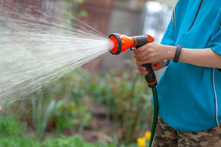 Gardener with watering hose and sprayer water on the flowers. Sparkling water spraying out of sprinkler on the green lawn. Summer gardening. Reklamní fotografie