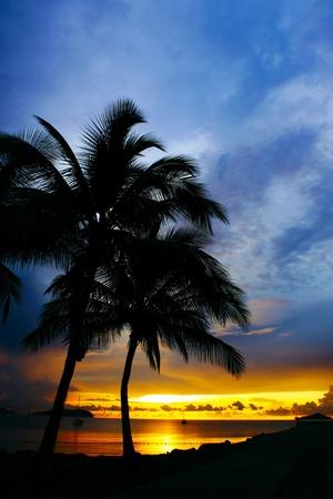 Sunset scenary at Marina Jetty Sutera Harbour