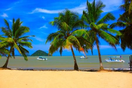 allen: Kokosnoot boom in zandstrand met blauwe achtergrond en boottochten naar eiland op Lokawi Beach, Putatan, Sabah Stockfoto