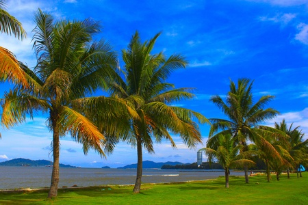 the place is outdoor: Seascape view in morning time at Tanjung Lipat, Kota Kinabalu, Sabah, Malaysia Stock Photo
