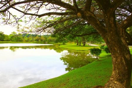 Landscape view of public park at Likas State Stadium, Kota Kinabalu, Sabah, Malaysia Stock Photo