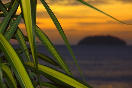 Panoramic view of sunset at Tanjung Arhu Beach 1, Kota Kinabalu, Sabah, Malaysia photo