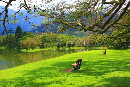 landscape: Panoramic view of public lake garden at Taiping, Perak, Malaysia Stock Photo