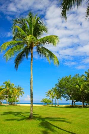 tuaran: Relaxing at Dalit Beach, Tuaran, Sabah, Malaysia