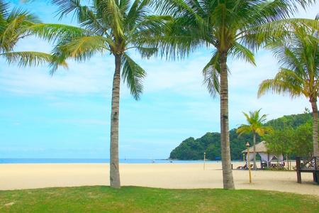 Vacation at Dalit Beach Tuaran, Sabah, Malaysia Stock Photo - 9844063
