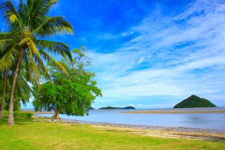 マレーシア ・ サバ州コタキナバルをコタ ビーチで朝の時間の間に美しい風景 写真素材