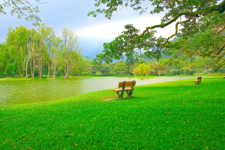 scenary: Panoramic view of public lake garden at Taiping, Perak, Malaysia Stock Photo