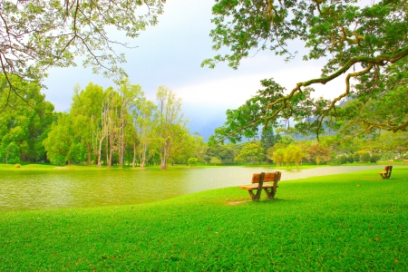 Panoramic view of public lake garden at Taiping, Perak, Malaysia photo