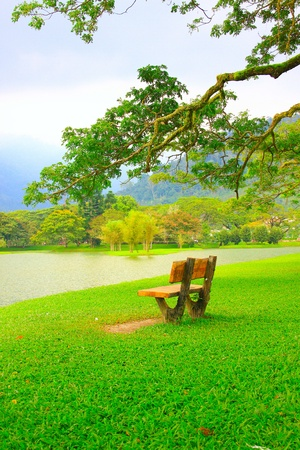 Panoramic view of public lake garden at Taiping, Perak, Malaysia Stock Photo - 11239050